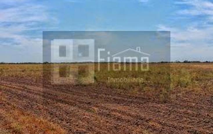 Foto de rancho en renta en  , sentispac, santiago ixcuintla, nayarit, 1301953 No. 09