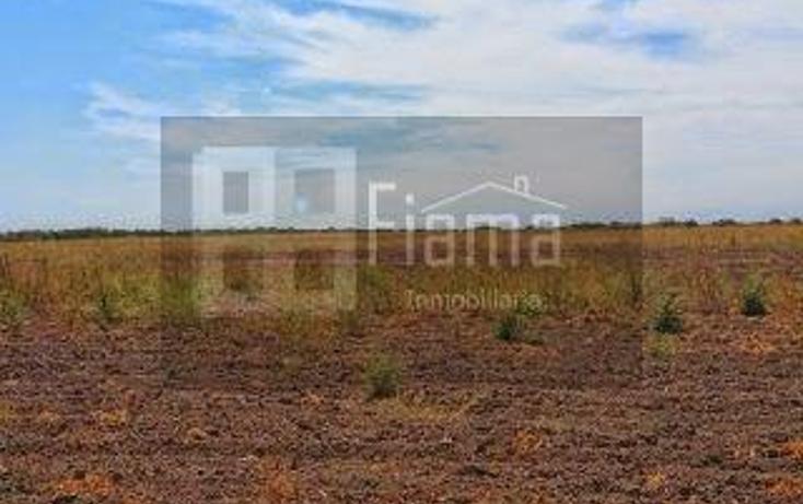 Foto de rancho en renta en  , sentispac, santiago ixcuintla, nayarit, 1301953 No. 10