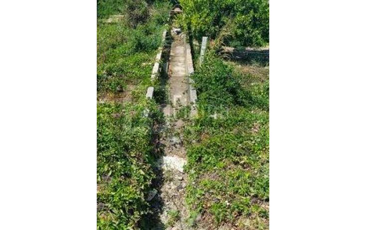 Foto de rancho en renta en  , sentispac, santiago ixcuintla, nayarit, 1301953 No. 14