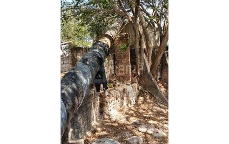 Foto de rancho en renta en  , sentispac, santiago ixcuintla, nayarit, 1301953 No. 18