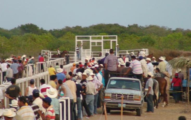 Foto de rancho en venta en  , sentispac, santiago ixcuintla, nayarit, 411112 No. 04