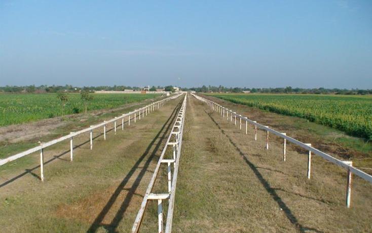 Foto de rancho en venta en  , sentispac, santiago ixcuintla, nayarit, 411112 No. 11