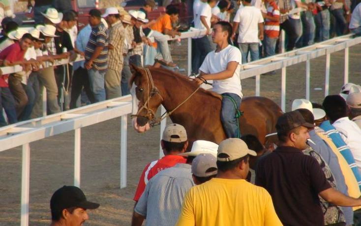 Foto de rancho en venta en  , sentispac, santiago ixcuintla, nayarit, 411112 No. 12