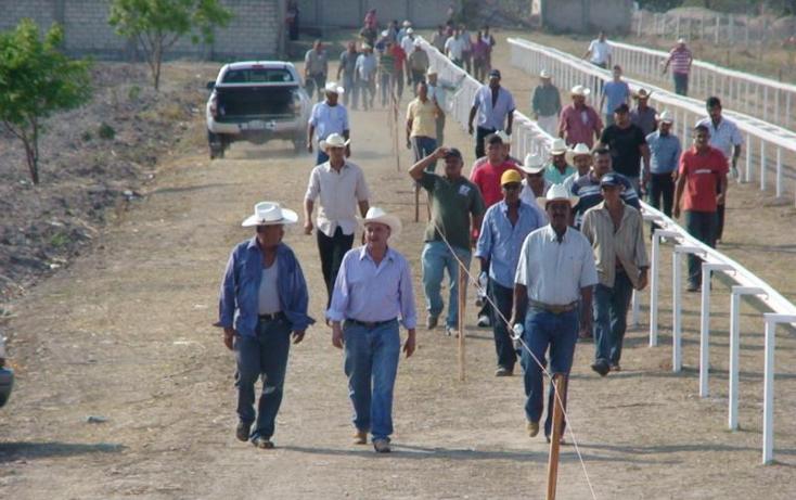 Foto de rancho en venta en  , sentispac, santiago ixcuintla, nayarit, 411112 No. 13
