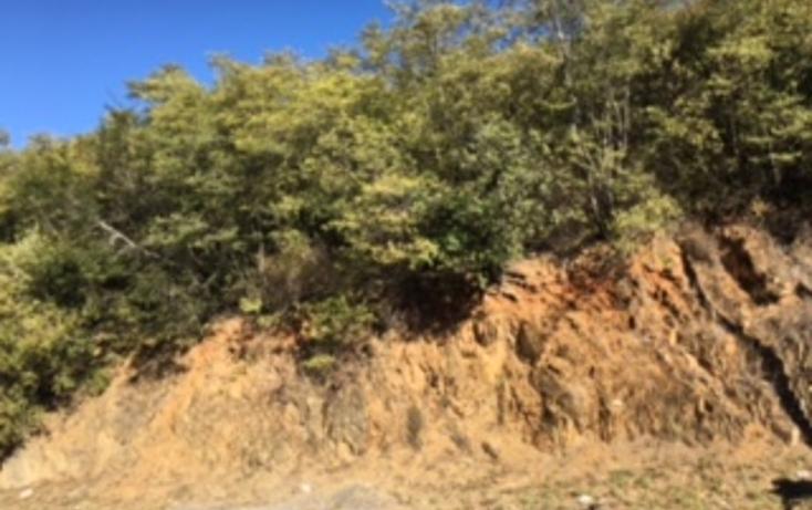 Foto de terreno habitacional en venta en  , sierra alta 3er sector, monterrey, nuevo león, 1601894 No. 06