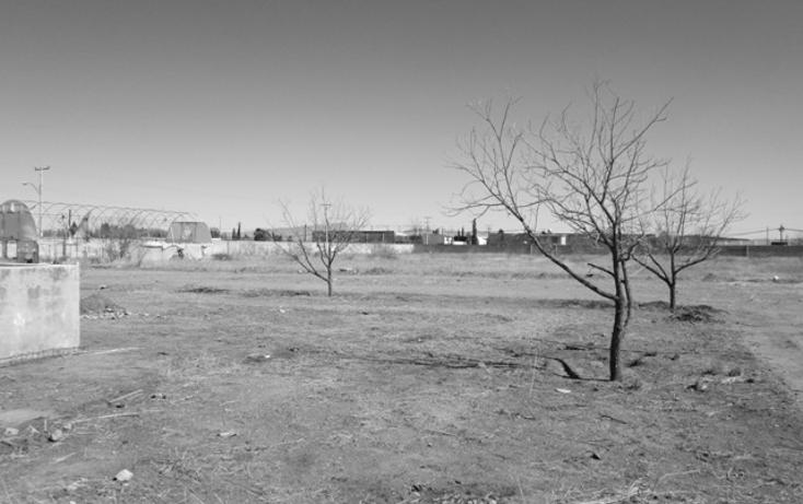 Foto de terreno comercial en renta en  , sierra azul, chihuahua, chihuahua, 1190845 No. 05