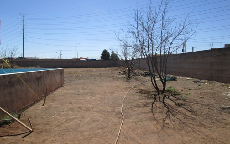 Foto de terreno comercial en renta en  , sierra azul, chihuahua, chihuahua, 1190845 No. 15