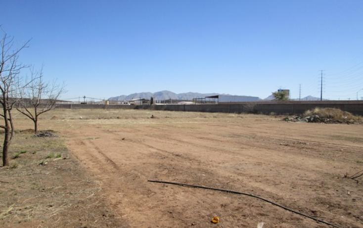 Foto de terreno comercial en renta en  , sierra azul, chihuahua, chihuahua, 1190845 No. 16