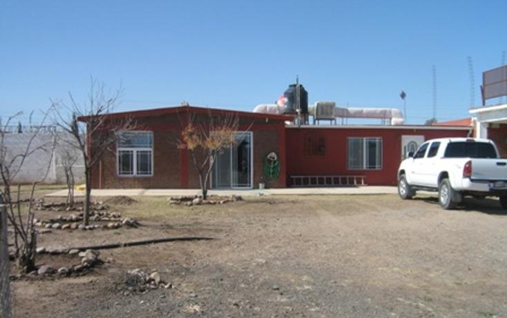 Foto de rancho en venta en  , sierra azul, chihuahua, chihuahua, 1618606 No. 01