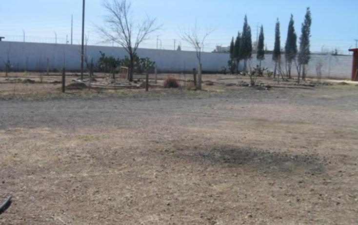 Foto de rancho en venta en  , sierra azul, chihuahua, chihuahua, 1618606 No. 08