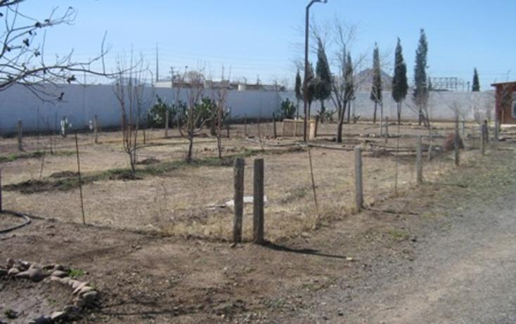 Foto de rancho en venta en  , sierra azul, chihuahua, chihuahua, 1618606 No. 10