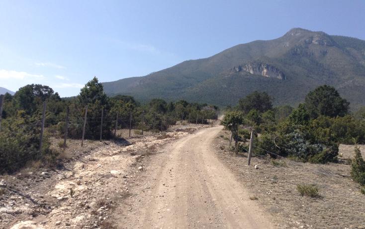 Foto de terreno habitacional en venta en  , sierra hermosa, arteaga, coahuila de zaragoza, 1112107 No. 02