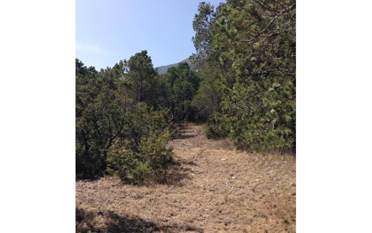 Foto de terreno habitacional en venta en  , sierra hermosa, arteaga, coahuila de zaragoza, 1112107 No. 04