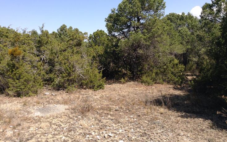 Foto de terreno habitacional en venta en  , sierra hermosa, arteaga, coahuila de zaragoza, 1112107 No. 05