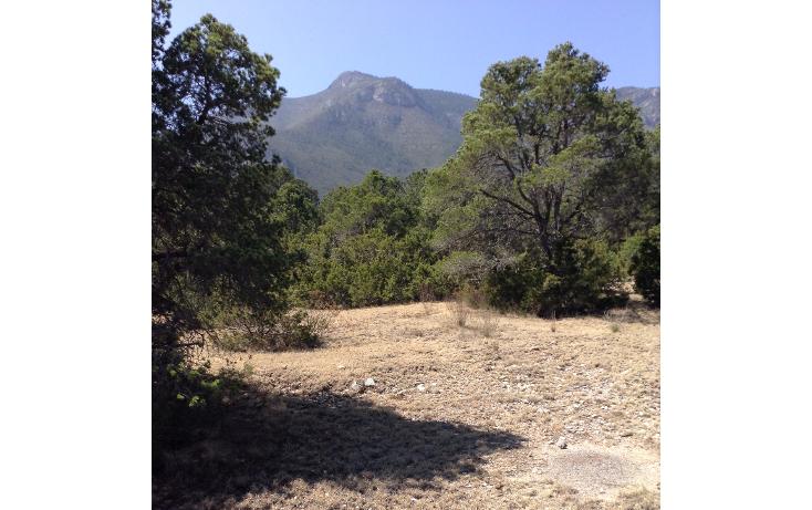 Foto de terreno habitacional en venta en  , sierra hermosa, arteaga, coahuila de zaragoza, 1112107 No. 08