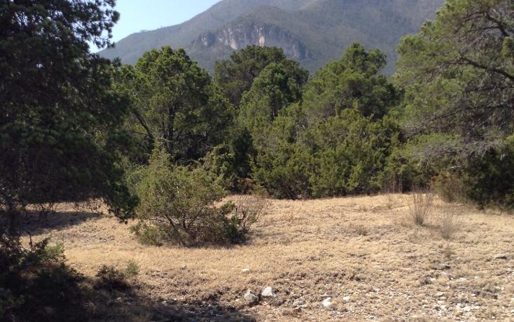 Foto de terreno habitacional en venta en  , sierra hermosa, arteaga, coahuila de zaragoza, 1112107 No. 09