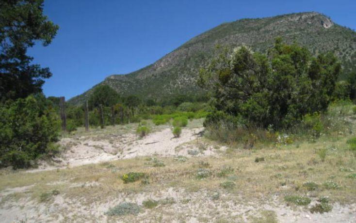 Foto de terreno habitacional en venta en, sierra hermosa, arteaga, coahuila de zaragoza, 1159581 no 02