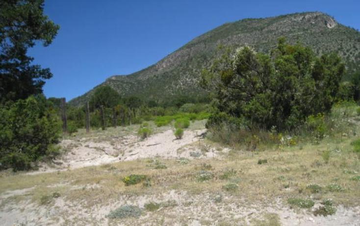Foto de terreno habitacional en venta en  , sierra hermosa, arteaga, coahuila de zaragoza, 1159581 No. 02