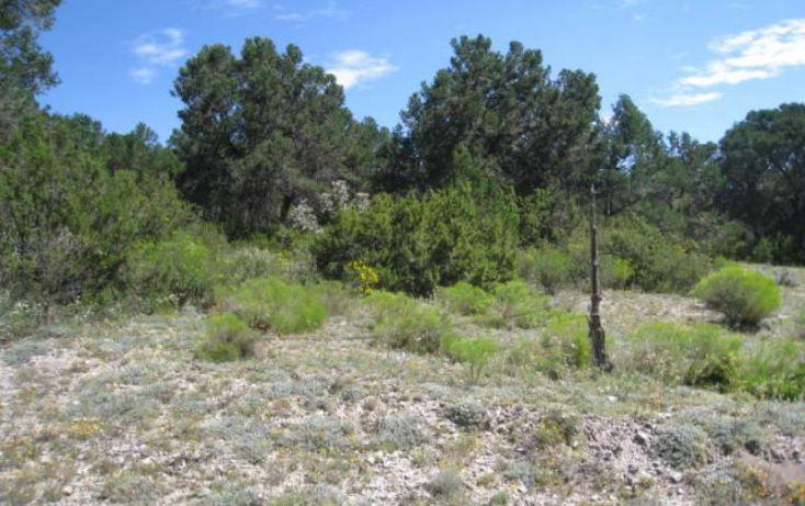 Foto de terreno habitacional en venta en, sierra hermosa, arteaga, coahuila de zaragoza, 1159581 no 03