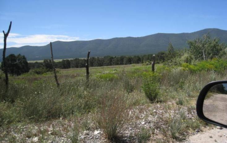 Foto de terreno habitacional en venta en  , sierra hermosa, arteaga, coahuila de zaragoza, 1159581 No. 04