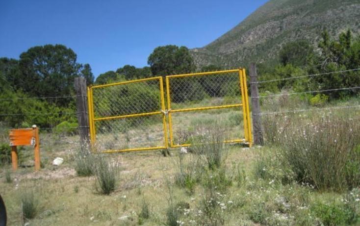 Foto de terreno habitacional en venta en  , sierra hermosa, arteaga, coahuila de zaragoza, 1159581 No. 05