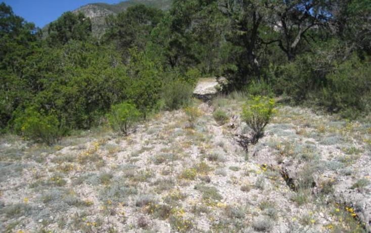 Foto de terreno habitacional en venta en  , sierra hermosa, arteaga, coahuila de zaragoza, 1159581 No. 08