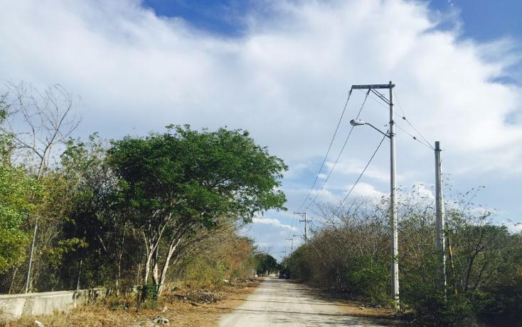Foto de terreno habitacional en venta en  , sierra papacal, mérida, yucatán, 1121417 No. 01