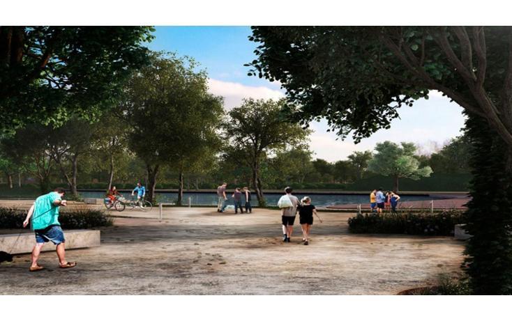 Foto de terreno habitacional en venta en  , sierra papacal, mérida, yucatán, 1242883 No. 05
