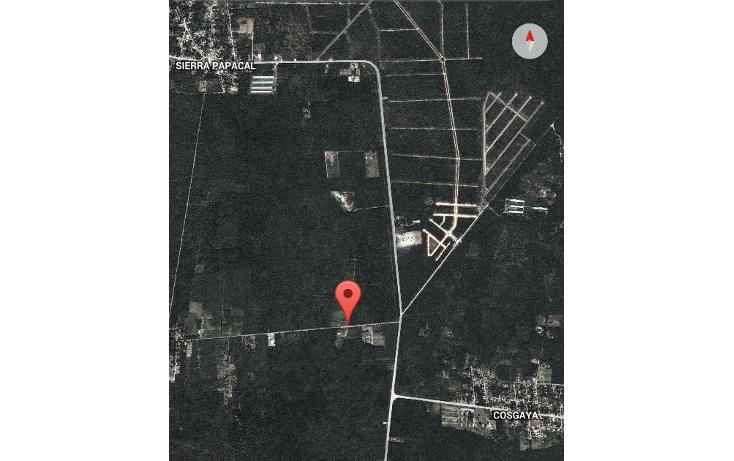 Foto de terreno habitacional en venta en  , sierra papacal, mérida, yucatán, 1259251 No. 02