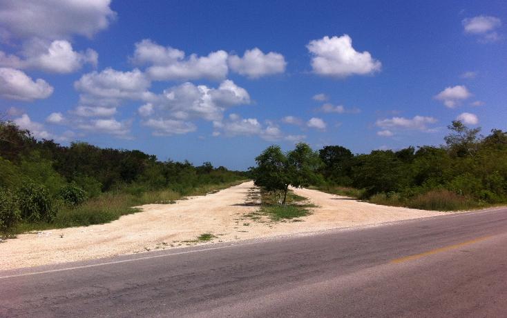 Foto de terreno habitacional en venta en  , sierra papacal, mérida, yucatán, 1496173 No. 02