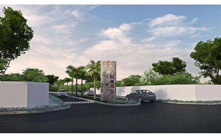 Foto de terreno habitacional en venta en  , sierra papacal, mérida, yucatán, 1733442 No. 01