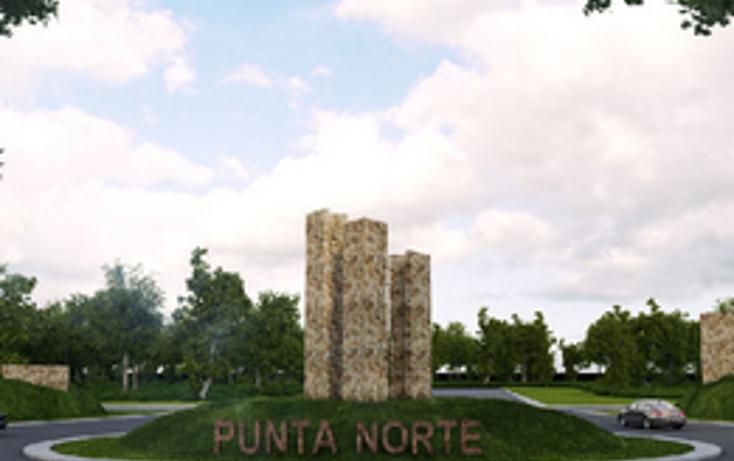 Foto de terreno habitacional en venta en  , sierra papacal, mérida, yucatán, 2013518 No. 05
