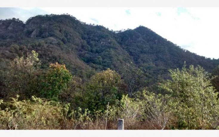 Foto de terreno comercial en venta en sin calle, san pedro tenayac, temascaltepec, estado de méxico, 1762344 no 03