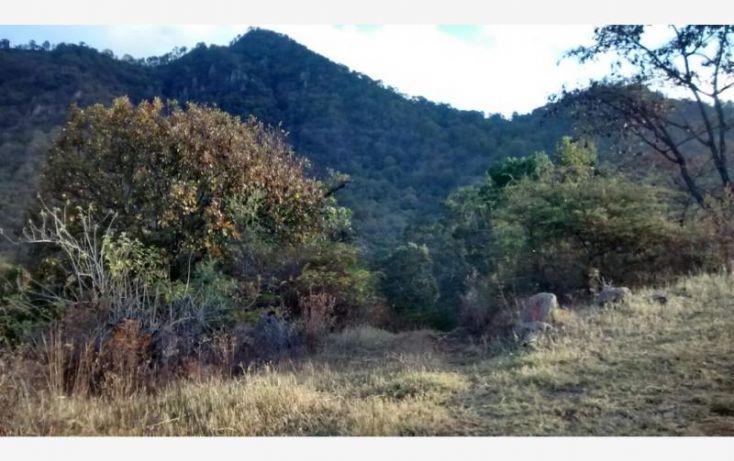 Foto de terreno comercial en venta en sin calle, san pedro tenayac, temascaltepec, estado de méxico, 1762344 no 05
