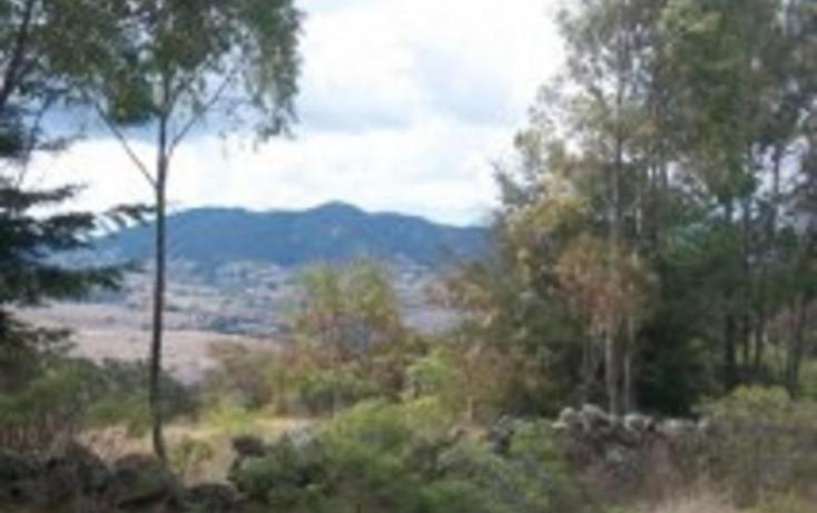 Foto de terreno habitacional en venta en sin nombre 0, san pedro tenango, amealco de bonfil, querétaro, 1335275 No. 04