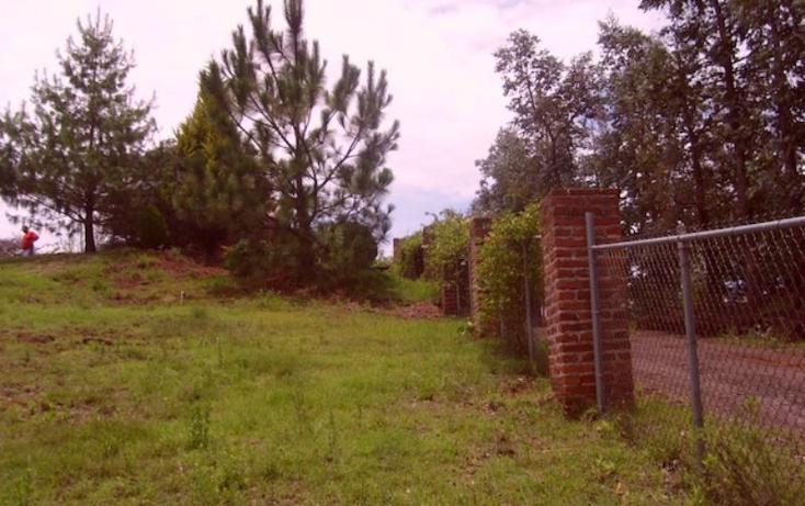 Foto de rancho en venta en sin nombre, acaxochitlán centro, acaxochitlán, hidalgo, 1591054 no 04