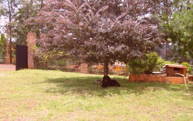 Foto de rancho en venta en sin nombre, acaxochitlán centro, acaxochitlán, hidalgo, 1591054 no 06