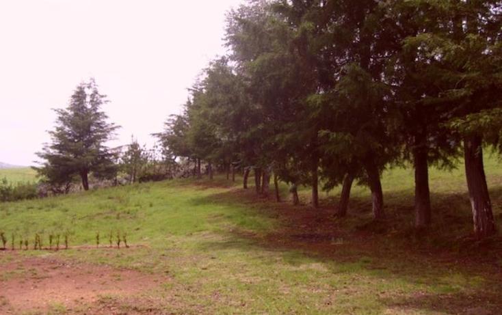 Foto de rancho en venta en sin nombre, acaxochitlán centro, acaxochitlán, hidalgo, 1591054 no 08