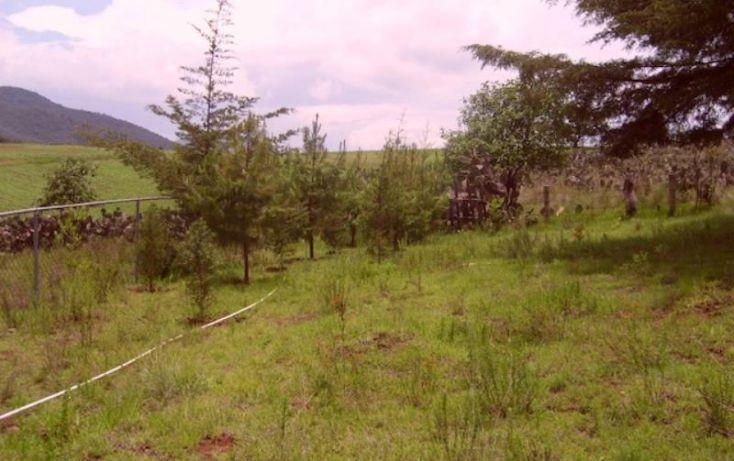 Foto de rancho en venta en sin nombre, acaxochitlán centro, acaxochitlán, hidalgo, 1591054 no 19