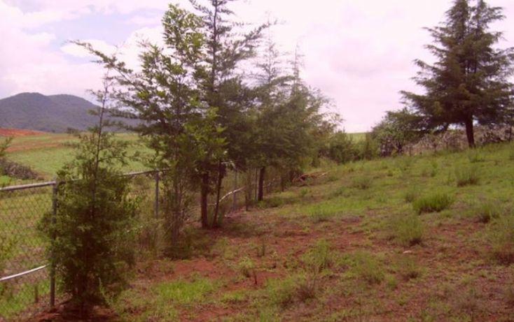 Foto de rancho en venta en sin nombre, acaxochitlán centro, acaxochitlán, hidalgo, 1591054 no 20