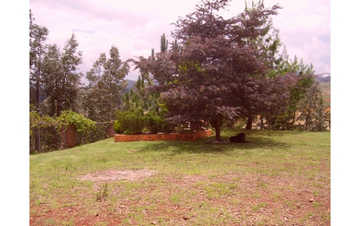 Foto de rancho en venta en sin nombre, acaxochitlán centro, acaxochitlán, hidalgo, 597896 no 03