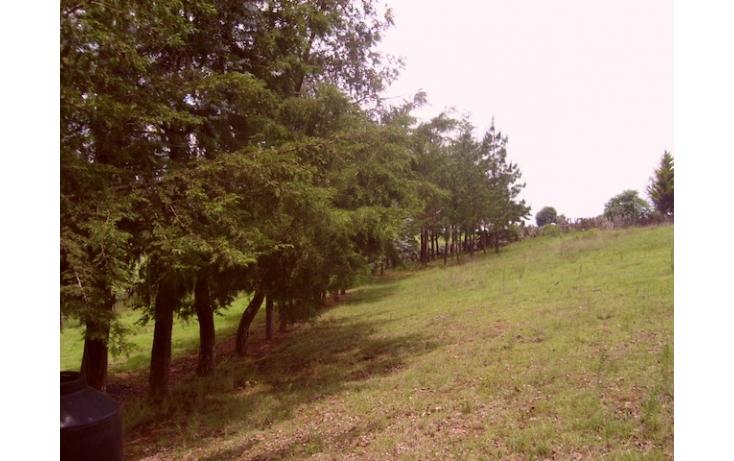 Foto de rancho en venta en sin nombre, acaxochitlán centro, acaxochitlán, hidalgo, 597896 no 04