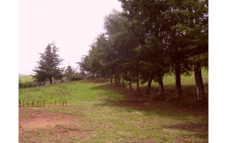 Foto de rancho en venta en sin nombre, acaxochitlán centro, acaxochitlán, hidalgo, 597896 no 18