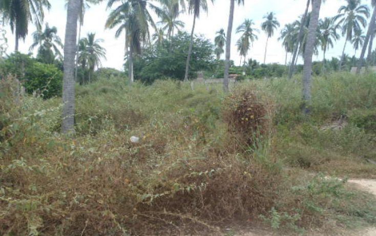 Foto de terreno habitacional en venta en sin nombre, barra de potosí, petatlán, guerrero, 1512829 no 04