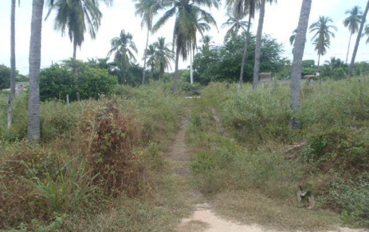 Foto de terreno habitacional en venta en sin nombre, barra de potosí, petatlán, guerrero, 1512829 no 05