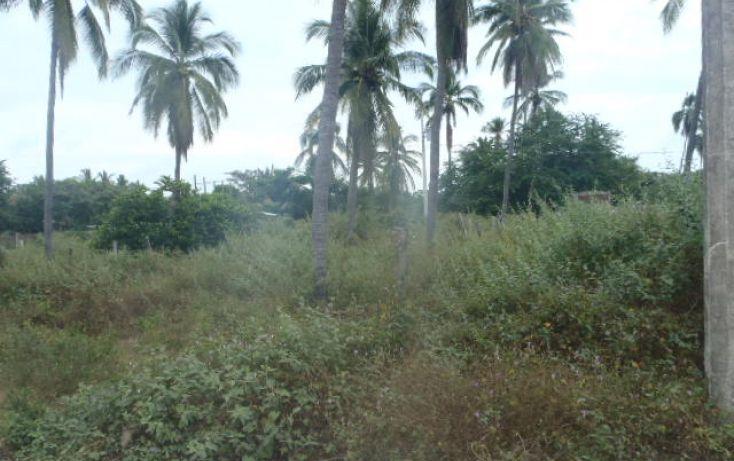Foto de terreno habitacional en venta en sin nombre, barra de potosí, petatlán, guerrero, 1512829 no 09