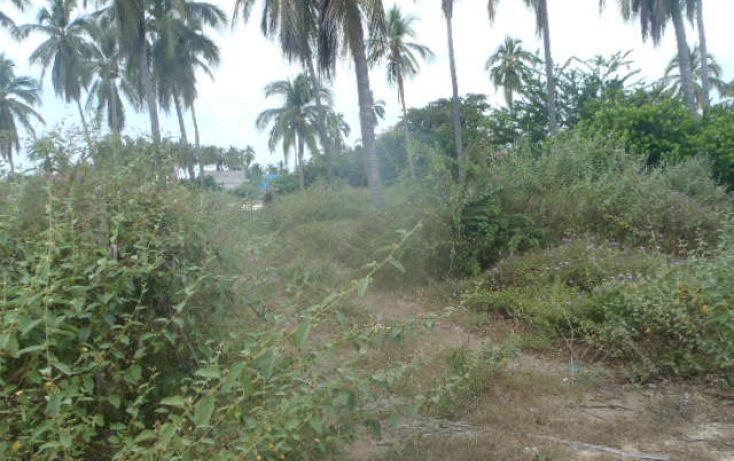 Foto de terreno habitacional en venta en sin nombre, barra de potosí, petatlán, guerrero, 1512829 no 10