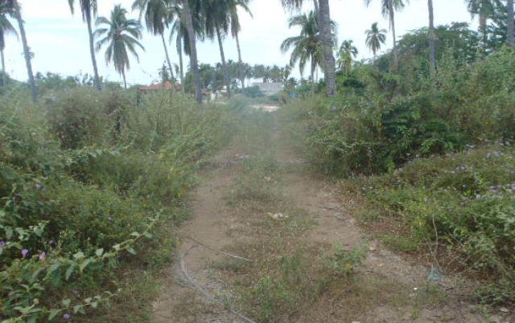 Foto de terreno habitacional en venta en sin nombre, barra de potosí, petatlán, guerrero, 1512829 no 11