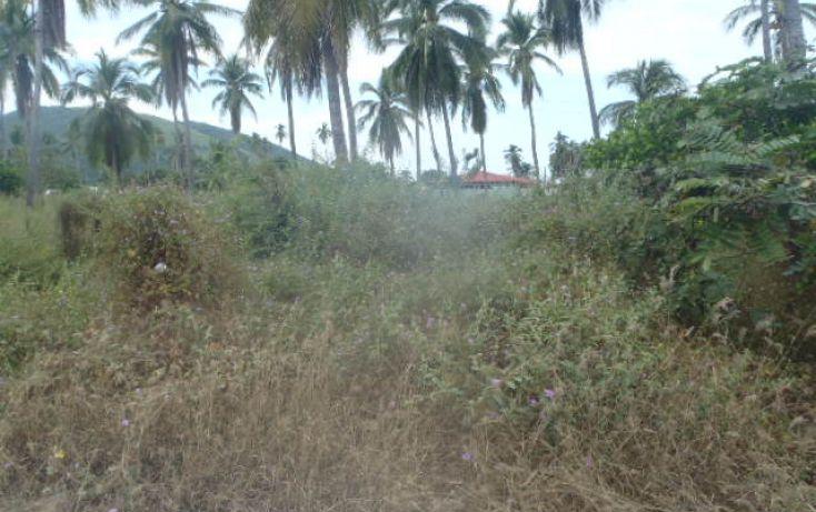 Foto de terreno habitacional en venta en sin nombre, barra de potosí, petatlán, guerrero, 1512829 no 12