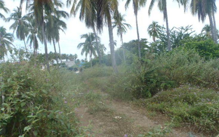 Foto de terreno habitacional en venta en sin nombre, barra de potosí, petatlán, guerrero, 1512829 no 14